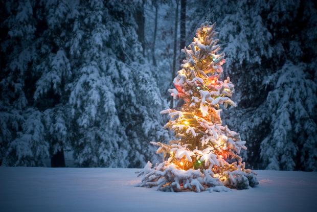 Navidad positiva